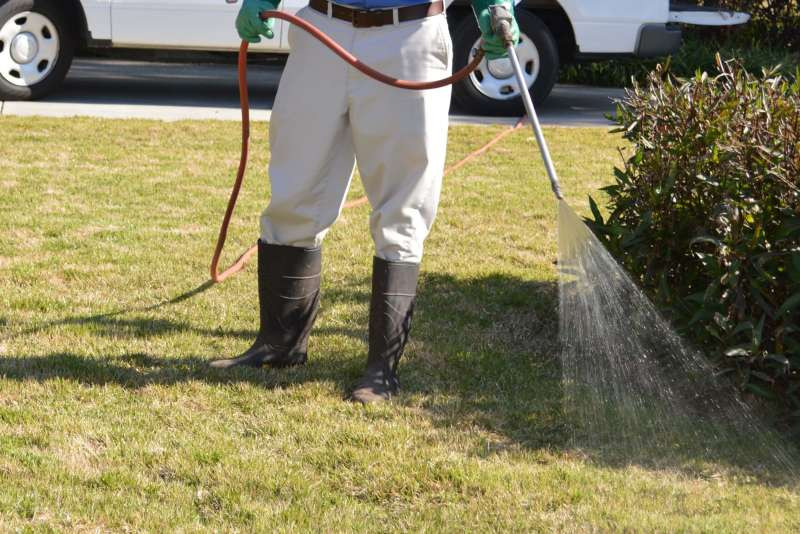 pest management services in Cypress