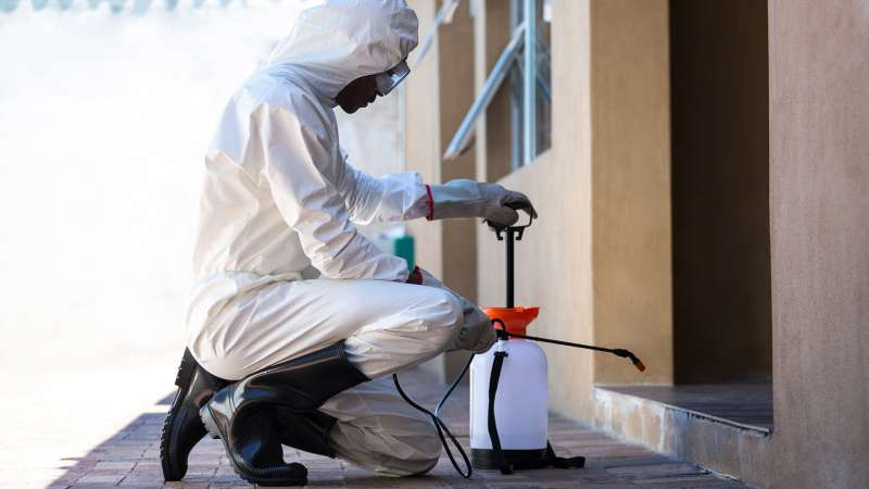 garden pest control in Stapleton