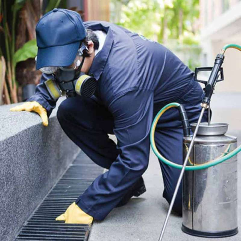 industrial pest control in Birmingham