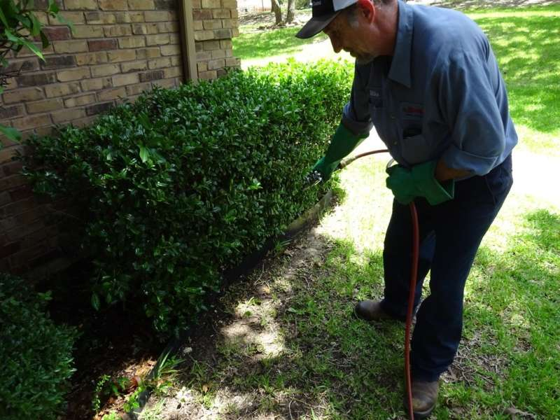 gopher pest control in Bluff Park