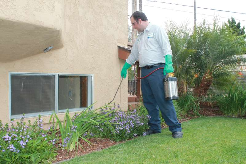 Termite Inspection in Gwinnett County Georgia ~Rodger's Pest